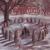 Primordial - Imrama - Marmorerad LP
