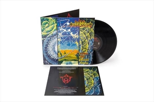 Dark Millennium - Ashore The Celestial Burden - LP